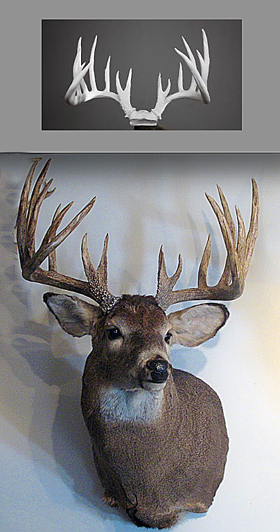 Buck Rack Before and After